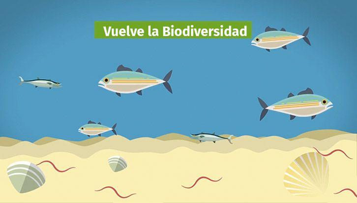 microorganismos-efectivos-agua