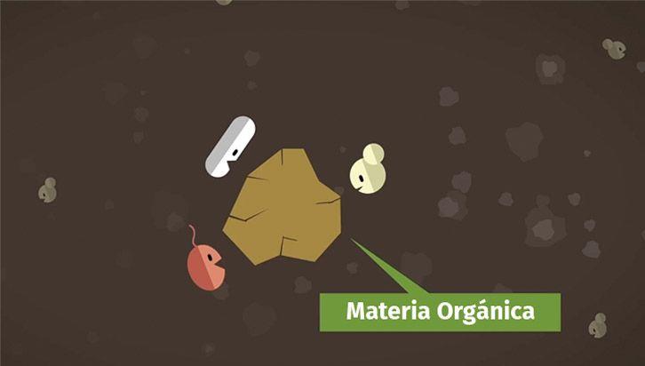 microorganismos efectivos para suelo
